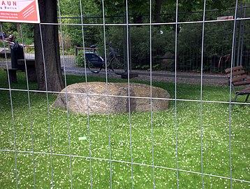Granit Findling am künstlichen Wasserlauf im Humboldthain 3.jpg