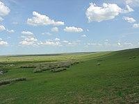 La prairie en mongolie intérieure