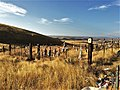 Grave of The Legendary Giantess NRHP 78002789 Yakima County, WA.jpg