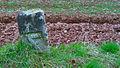 Grenzstein Richelhumes 26.jpg