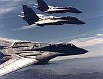 Grumman F-14A Tomcats of VF-301 in flight on 5 January 1986 (NNAM.1996.253.7458.046).jpg