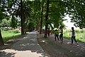 Gurukul Road - ISKCON Campus - Mayapur - Nadia 2017-08-15 1965.JPG