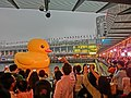 HK TST evening 183 yellow Rubber Duck visitors May 2013.JPG