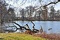 Hannover Herrenhausen 2014-I by-RaBoe 072.jpg