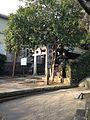 Haraedo Shrine near Suwa Shrine.jpg