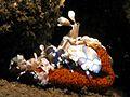 Harlequin Shrimps - Hymenocera Elegans.jpg
