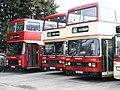 Hedingham Omnibuses buses Leyland Olympian ECWs L310 (VJO 202X) and L306 (BBW 213Y).jpg