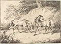 Henry Bernard Chalon - Wild Horses (1804).jpg