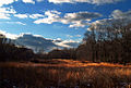 Hickory Run State Park Sky View.jpg