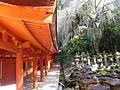 Historic Monuments of Ancient Nara-122742.jpg