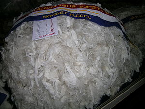 Wool - Champion hogget fleece, Walcha Show