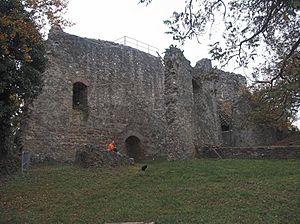 Homburg - Blick über den Innenhof Richtung Schildmauer