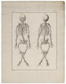 Homo sapiens - Rachitis - 1700-1880 - Print - Iconographia Zoologica - Special Collections University of Amsterdam - UBA01 IZ19600214.tif