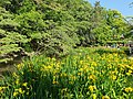 Horai Park.jpg