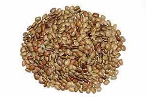 Seeds of Macrotyloma uniflorum