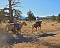 Horseback riding in the Badlands (13986028338).jpg