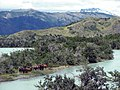 Horses in River Serrano. Torres del Paine National Park, Chile.jpg