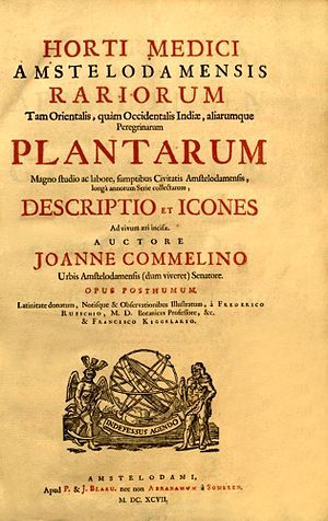 Jan Commelin - Title page