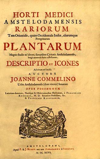 Jan Commelin - Title page