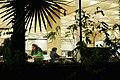 Howard-Tilton windows at night.jpg