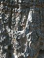 Hoysaleshwara temple, Halebidu 43.jpg