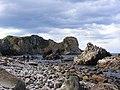 Huriawa Peninsula Karitane.jpg