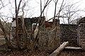 Hyde Mill Ruins in late fall.jpg