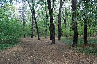 Hyde Park, Belgrade