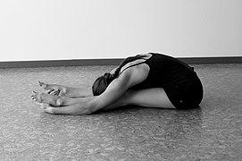 yin yoga  wikipedia