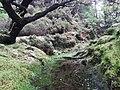 Ilha da Terceira (24878588397).jpg