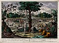 In the Garden of Eden, while the serpent curls around the tr Wellcome V0034184.jpg