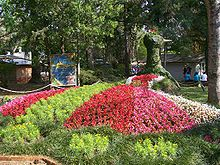 Pavo real hecho con flores durante la Fiesta de la Flor.