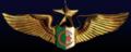 Insigne-AAF.PNG