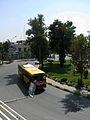 Iran sq - trees - nishapur - September 27 2013 08.JPG