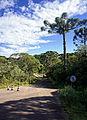 Itaimbezinho - Parque Nacional Aparados da Serra 03.jpg