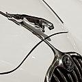 Jaguar (Distintivo).jpg