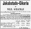 Jakobstads-Cikoria.jpg