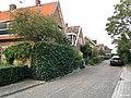 Janstraat.jpg