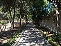 Japan Lane, Japanese Garden, and whereabouts 13.jpg