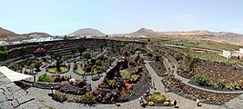 Jardín de cactus pano.jpg