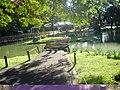 Jardim Japonês - panoramio (16).jpg