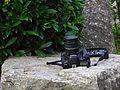 Jardin Japonais, Toulouse (8103294597).jpg