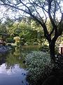 Jardin japonais Toulouse plan d eau.jpg