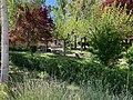 Jardines en Sotillo de la Ribera 01.jpg