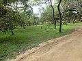 Jayanthipura, Polonnaruwa, Sri Lanka - panoramio (7).jpg