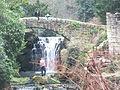 Jesmond Dene Mill 1166.JPG