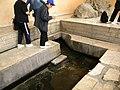 Jordan (Jordan, Moise'source of water (Tourists at the spring ; DSCN0954.jpg