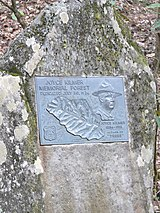 Dedication plaque in the Joyce Kilmer Memorial Forest.