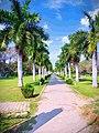 Kaveri park in Mandya.jpg
