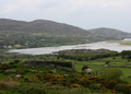 Kenmare Bay.png